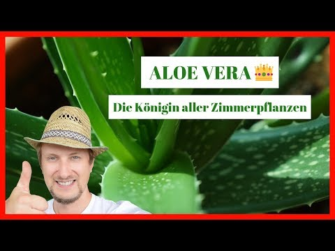 Forever Living - Aloë Vera products - Lotus Leven