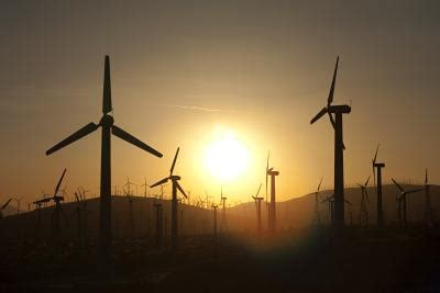 What Generates More Power: Wind or Solar Panels? | The